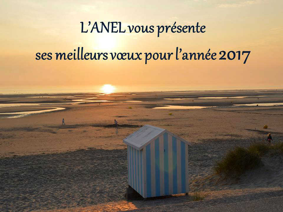 voeux-anel-2017
