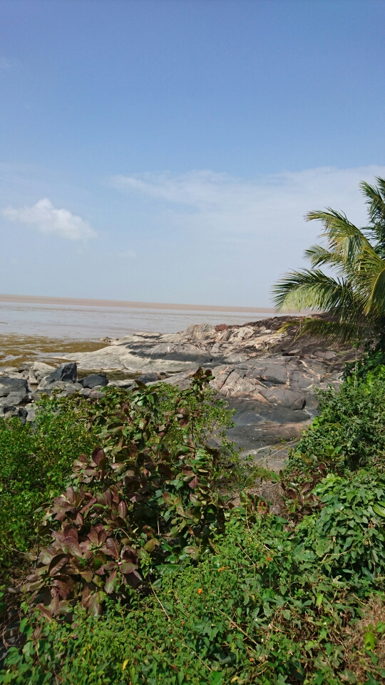 littoral guyane atelier EUCC France