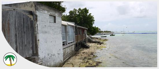 Illustration_habitat-Guadeloupe-outremer