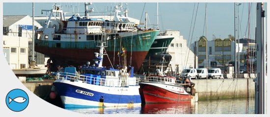 Le président de l'ANEL apporte son soutien aux organisations professionnelles du secteur maritime