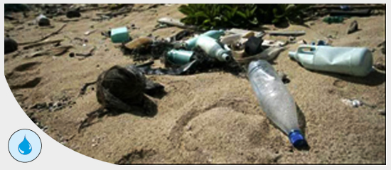 pollution plastique en mer